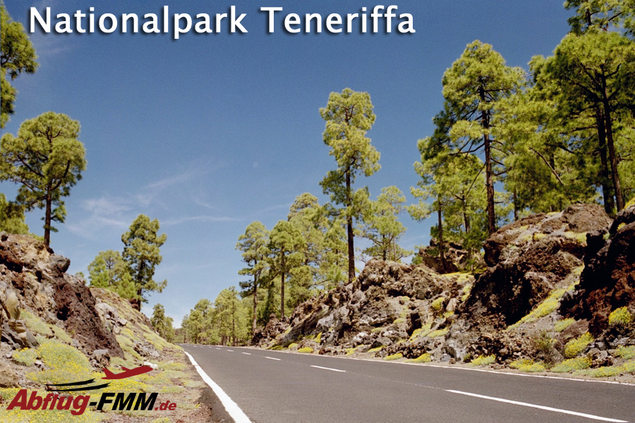 Nationalpark Teneriffa Kanaren
